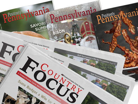 PFB Publications