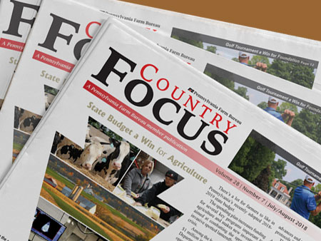 Country Focus