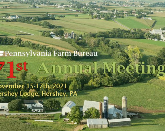 2021 PFB Annual Meeting Feature image