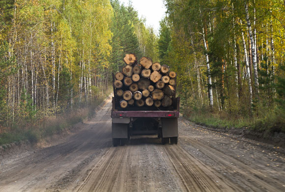 USDA Offers Pandemic Assistance for Timber Harvesters and Haulers