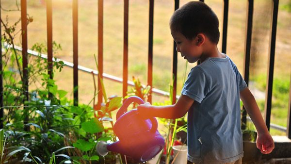 Youth Summer Garden Camp by Penn State Master Gardeners